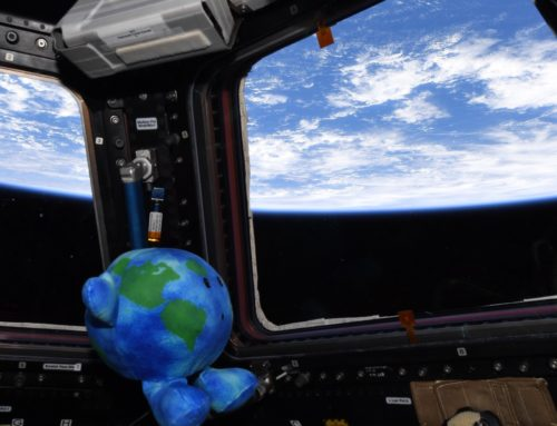 A Star is Born! Celestial Buddy Earth Goes to Space