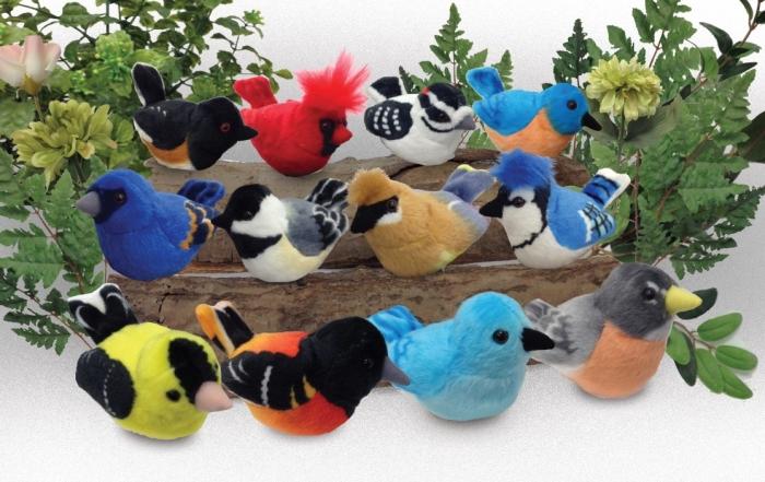 new birds assortment